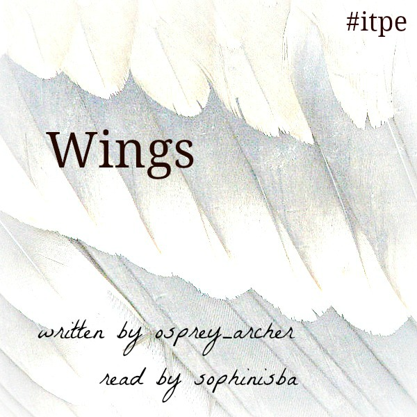 Wings written by osprey_archer read by sophinisba